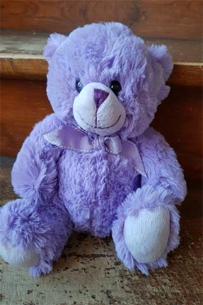 OURS PELUCHE VIOLET